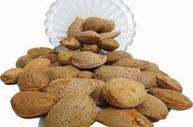 خرید انواع بادام ایرانی مرغوب و ارزان قیمت