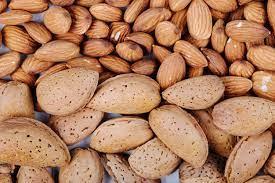 مرکز فروش بادام درختی ایرانی