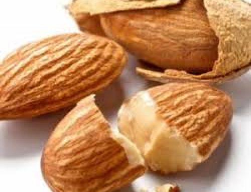 خرید بادام درختی منقا با مناسب ترین قیمت
