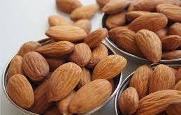 فروش بادام تلخ از تولید کننده